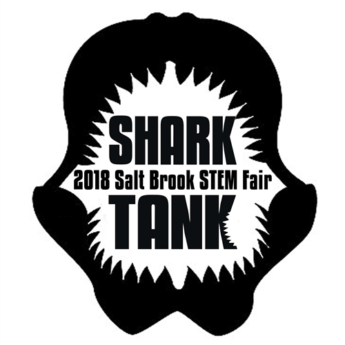 Salt Brook STEM Fair / General Information